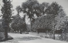 Lie 486 Kruising In het groen (rechts achter de bomen de boerderij De Aschheuvel )