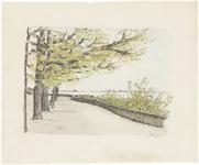 15 De Tolhuiswal in Tiel richting rondeel zonder kanonnen met links een bomenrij