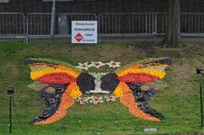 Mozaiëken Fruitcorso 2013. Mozaiek met als titel Vlinderkunst , gemaakt door Reddingsbrigade Tiel. Gesponsord door ...