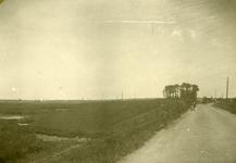 Mobilisatie Kesteren en omgeving: Links weiden met rechts een weg met een fietser en paard met wagen