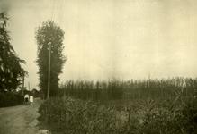 Mobilisatie Kesteren en omgeving: 2 wandelende personen op pad met achteraan een woonhuis, rechts een maïsveld