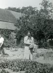 Mobilisatie Kesteren en omgeving : vrouw met groenten in haar hand staand in tuin