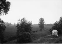 2-15055 [1975-1985]
