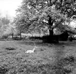 19-1636 Hertenkamp