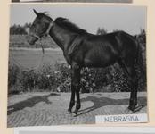 06_005_L_05 Nebraska